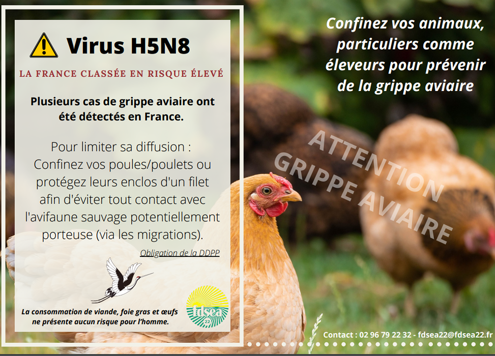 Prévention contre le virus de la grippe aviaire 0